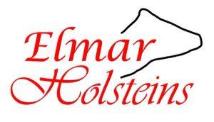 Elmar Holsteins